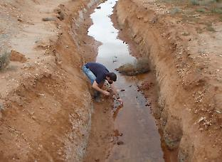 Sampling from acidic saline drains in Western Australia.